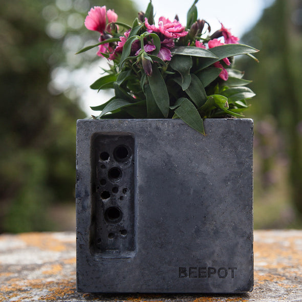 charcoal concrete bee hotel with space for bee friendly planting