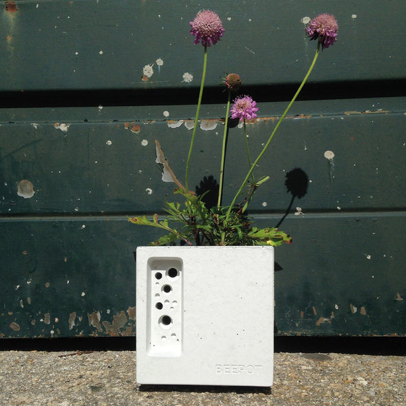 beautiful concrete planter with bee nesting space for solitary bees