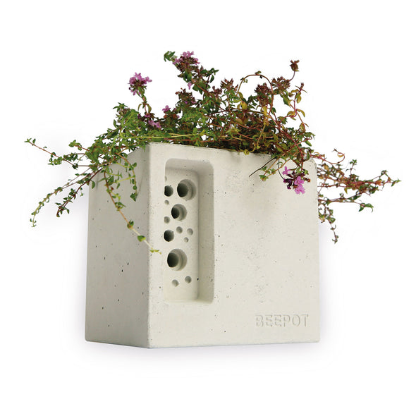 beepot mini stylish bee hotel and concrete planter