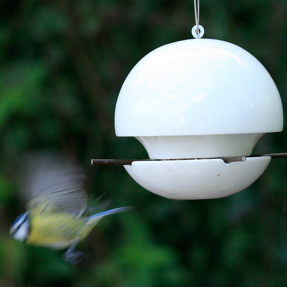 Bluetit in flight from Green&Blue Birdball seed bird feeder