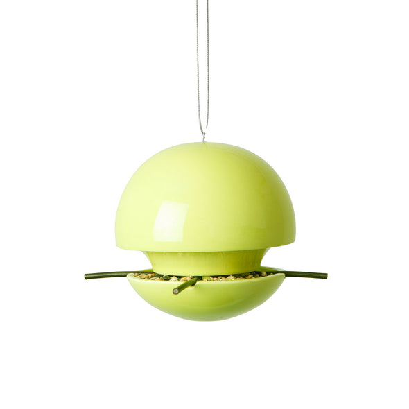 Lime seed feeder by green and blue