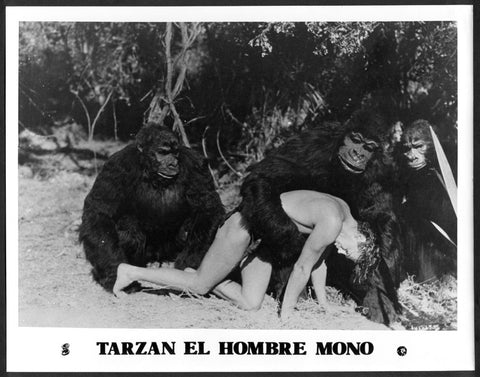 Tarzan The Ape Man 8x10 still Johnny Weissmuller