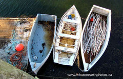 three row boats, Grand Manan Island