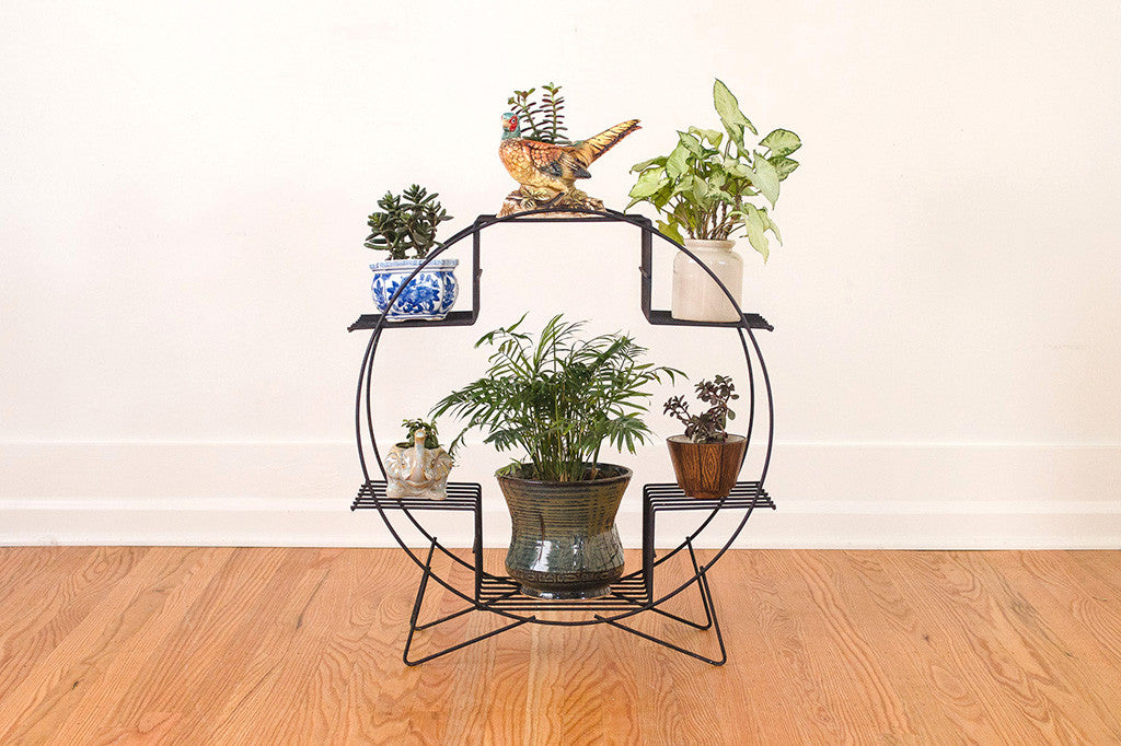 MCM Hairpin Plant Stand