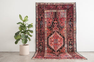 5x9.5 Persian Rug | MEHRY