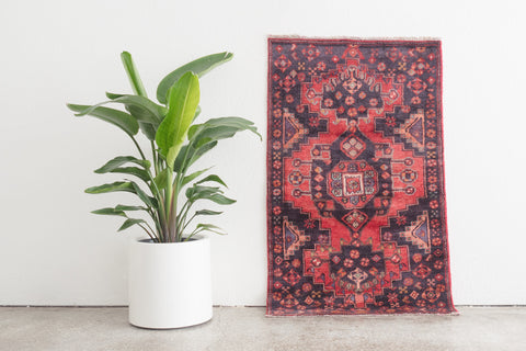 3x5 Persian Rug | PAYAM