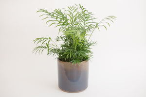 "8"" Pot / Planter - Sunset Cylinder"