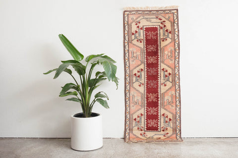 2.5x6 Turkish Rug | AZIME