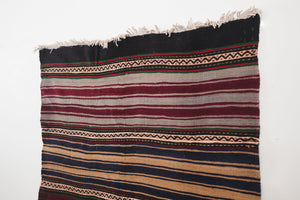 4x7 Turkish Kilim Rug | ERDAL