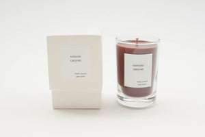 NA NIN Places Candle 5oz | Somoto Canyon