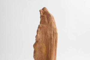 Live Edge Sculpture