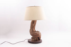 Live Edge Wood Lamp