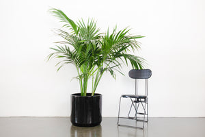 "18"" Pot / Planter - Gloss Black Cylinder"