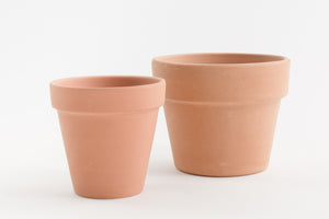 "3"" Pot / Planter - Terra Cotta Azalea"