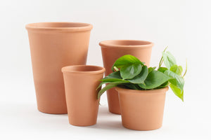 "4"" Pot / Planter - Terra Cotta Rosen"