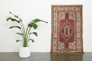 3.5x6 Turkish Rug | FERNAO