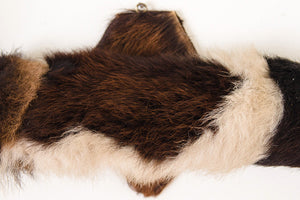 Mounted Cowhide Bullhorns