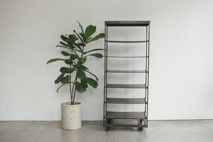 Industrial Rolling Shelf
