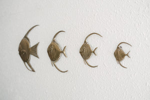 Brass Fish Family