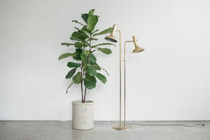 Brass Double Lamp