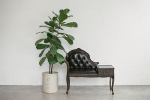 Shipping \\ Leather Entry Bench