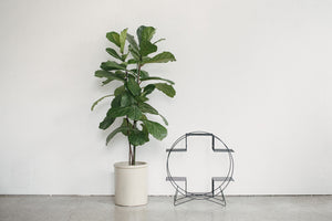 Circle Plant Stand