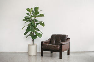 Lafer Leather Chair