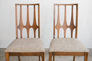 Brasilia Dining Chairs