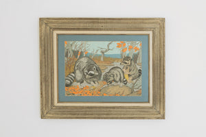 Vintage Raccoon Watercolor