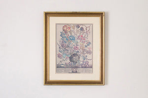 Framed Botanical Print