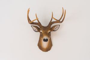 Faux Taxidermy Deer Head
