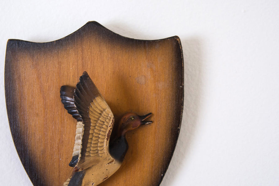 Nature Craft Duck Mount