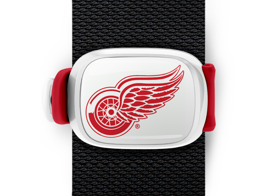 Detroit Red Wings Stwrap - Stwrap