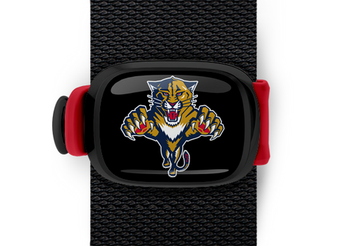 Florida Panthers Stwrap - Stwrap
