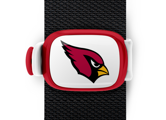 Arizona Cardinals Stwrap - Stwrap