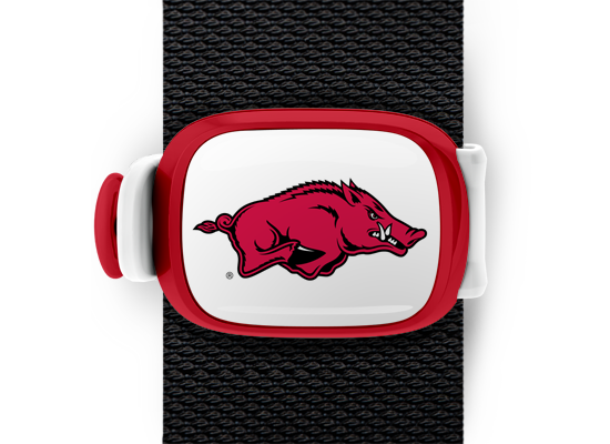 Arkansas Razorbacks Stwrap - Stwrap