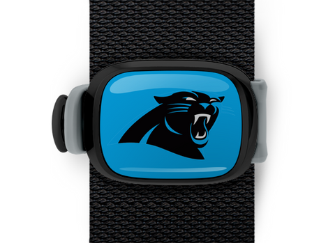 Carolina Panthers Stwrap - Stwrap