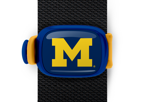 Michigan Wolverines Stwrap - Stwrap