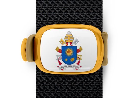 Pope Francis Coat of Arms Stwrap - Stwrap