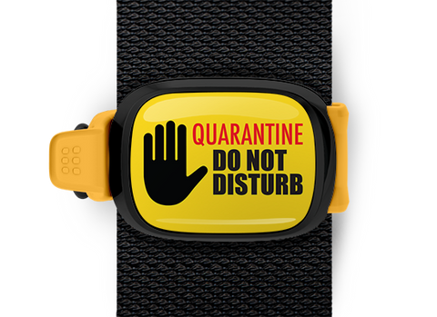 Quarantine Do Not Disturb <br> Stwrap Bag Tag