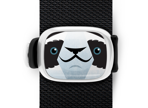 Parker the Panda Bear Stwrap - Stwrap