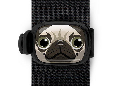 Pugsy the Pug Stwrap - Stwrap