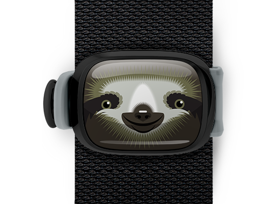 Sylvia the Sloth Stwrap - Stwrap