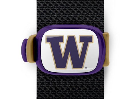 Washington Huskies Stwrap - Stwrap