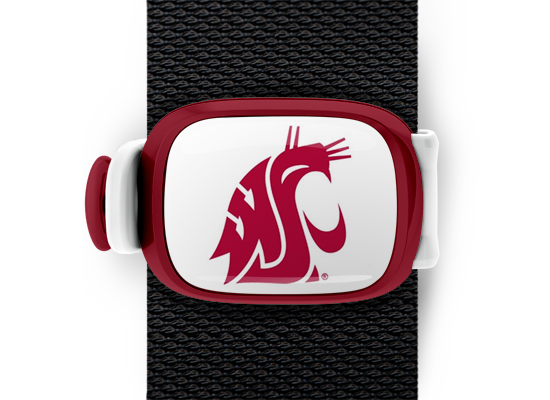 Washington State Cougars Stwrap - Stwrap