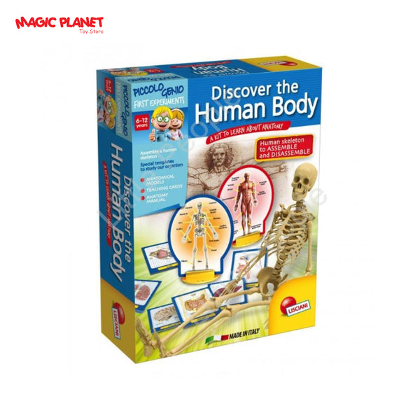 Lisciani Discover the Human Body
