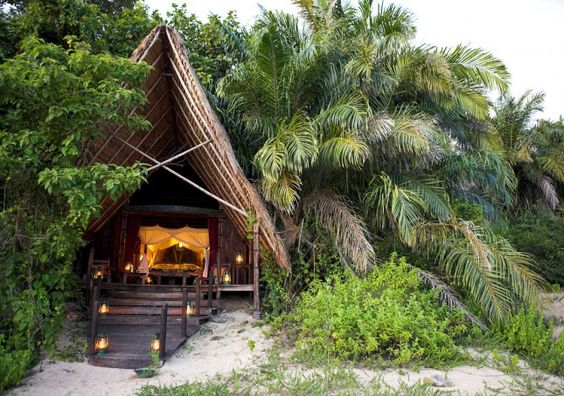 tropical glamping