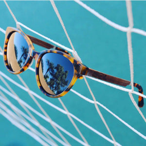 Hayden // Tortoise Acetate & Wood // Polarized