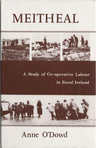Meitheal: a study of co-operative labour in rural Ireland