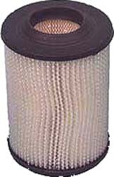 Air Filter, E-Z-Go Marathon 2 Cycle Gas 1976-94 : FIL-0005